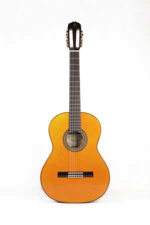 Guitarra Raimundo 126 Palosanto
