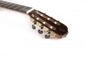 Guitarra Raimundo 126 Rosewood